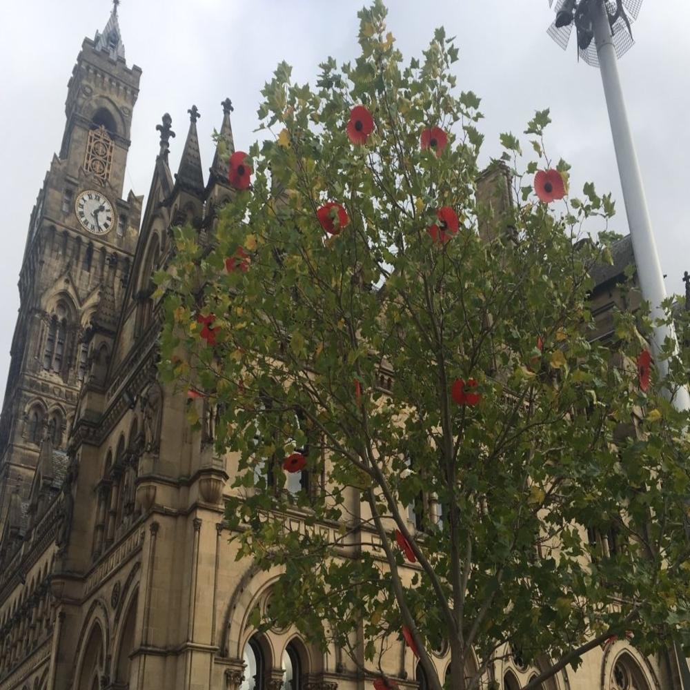 Bradford Armistice Day – Slider